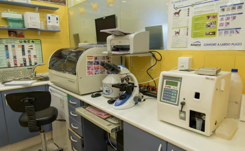 laboratorio de la Clinica Veterinaria Velazquez