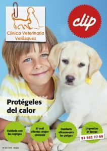 revista-21-Clinica-Veterinaria-Velazquez